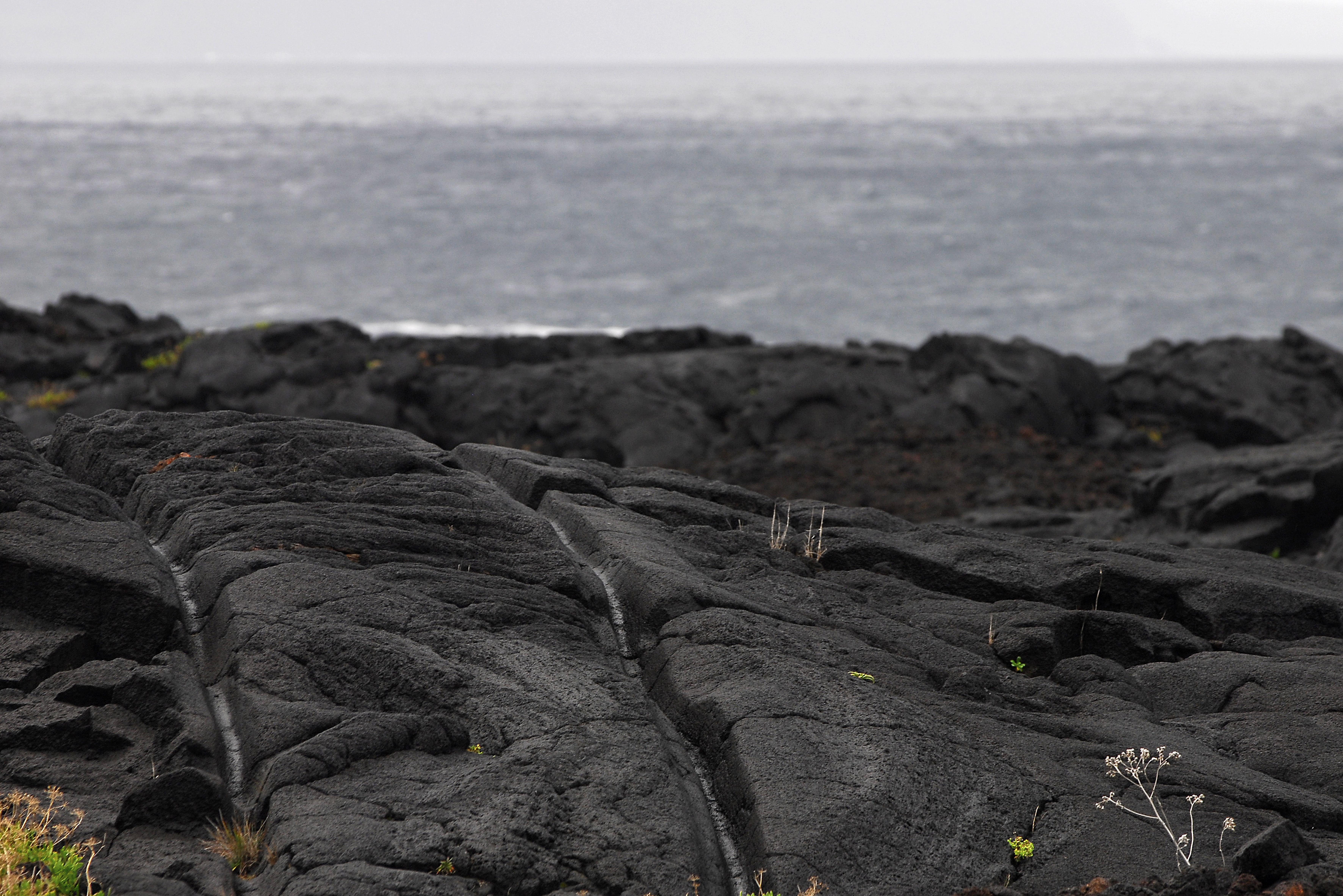 Empreintes dans basalte