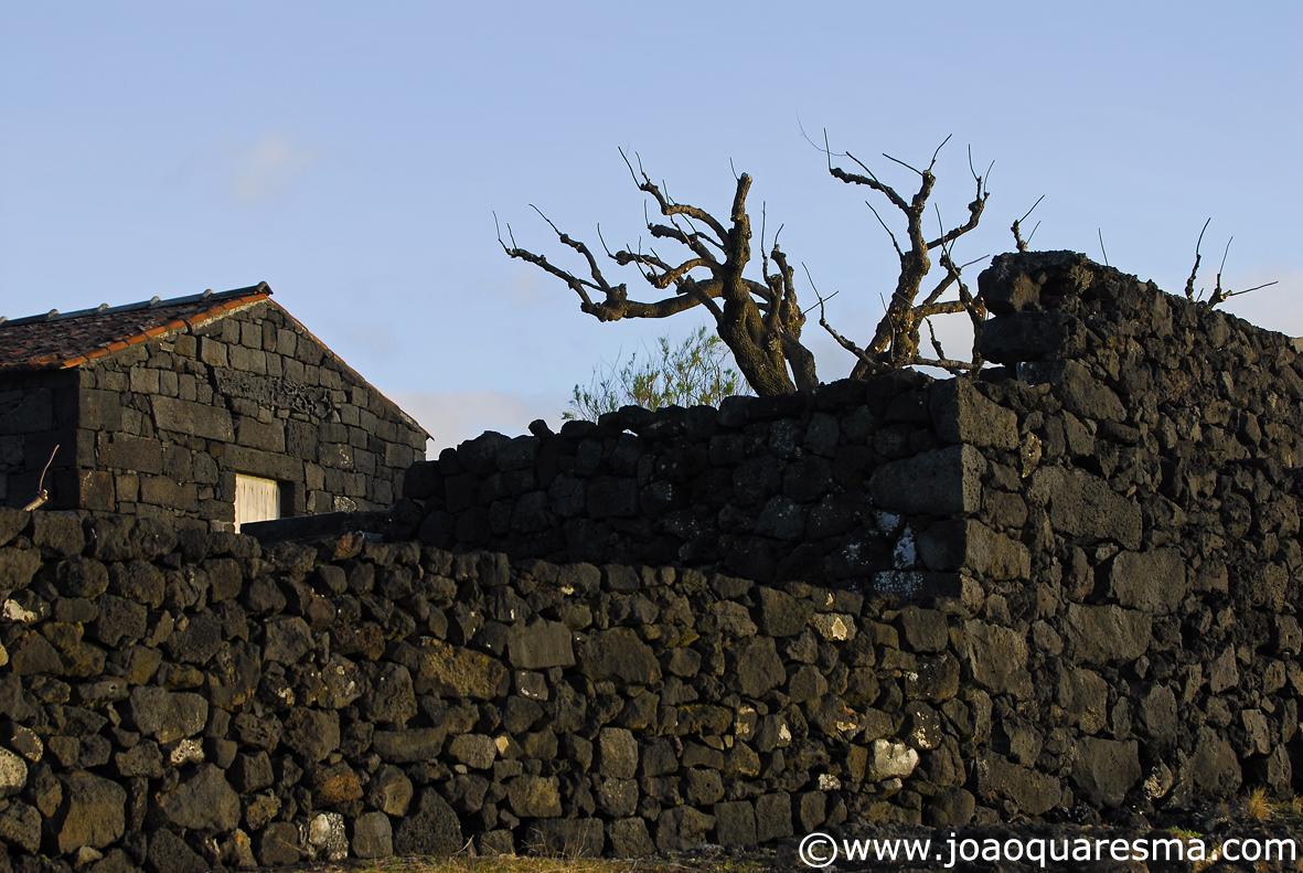 Maison en Basalte  Pico Açores